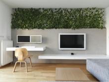 Растения в современном дизайне интерьера квартиры
